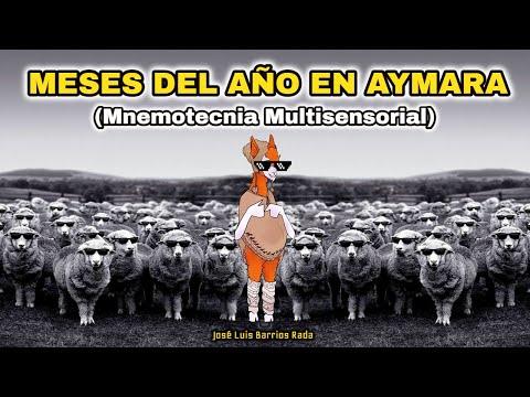 2 MNEMOTECNIA MULTISENSORIAL DEL IDIOMA AYMARA (Llamayu)  - Jose Luis Barrios Rada