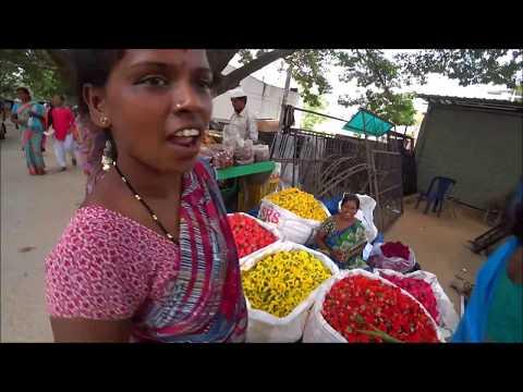 48. Утро с обезьяной.  Самый быстрый шопинг, на рикше по рынку. Субботний маркет. Путтапарти