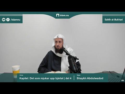 Sahih al-Bukhari | Kapitlet: Det som mjukar upp hjärtat | del 4