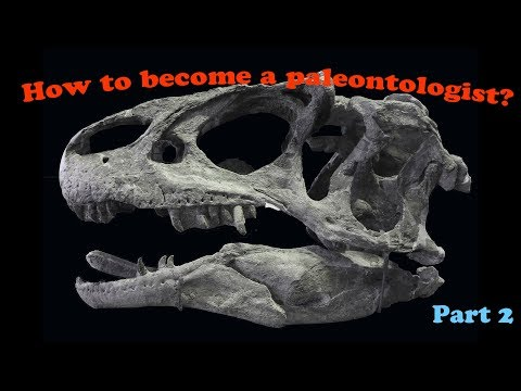 How To Become A Paleontologist? (part 2)