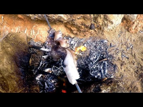 """Καθημερινές δόσεις #49 """"Octopus Hot Dog on the beach"""""""