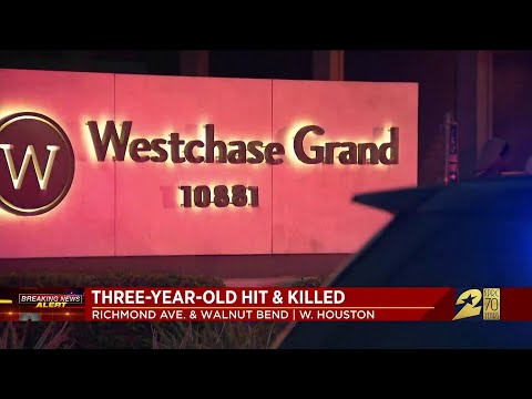 Boy struck, killed by vehicle being driven by his mother at