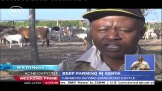 The different way enterprising Kenyans are venturing into beef farming