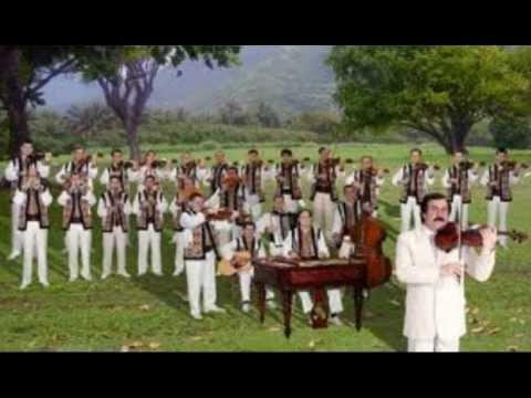 Orchestra 'Lautarii' Hora Mare