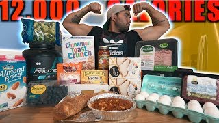 World's Strongest Man Diet Challenge | 12,000 Calories!!