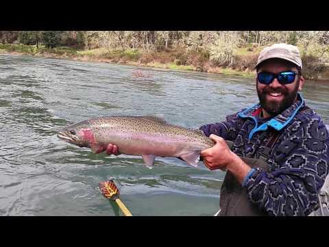 Steelhead Fishing In North Umpqua River, Oregon