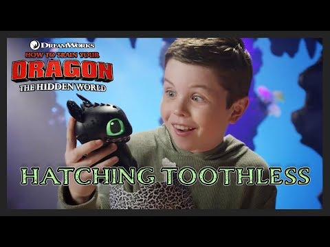 How To Train Your Dragon Hatching Toothless – 30