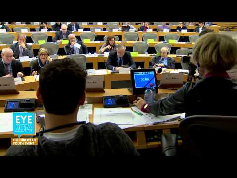 EYE Hearings - Committee on Constitutional Affairs (AFCO) 20/01/2015