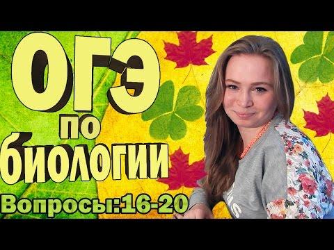 Репетитор по биологии в Москве, подготовка к ЕГЭ по