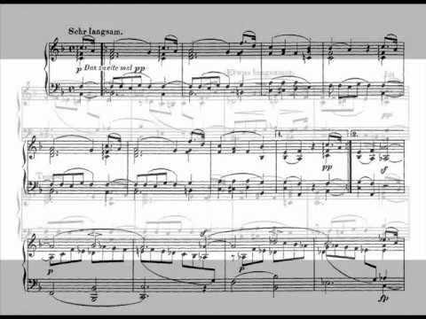 Jörg Demus plays Schumann Album für die Jugend Op.68 - 30. * * *