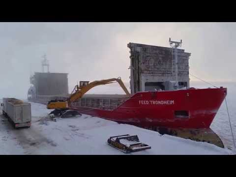 Feed Trondheim unloading woodchips