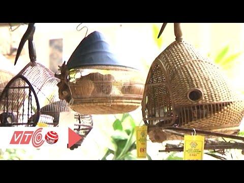 Hội thi chim cú gáy lớn nhất Hà Nội | VTC