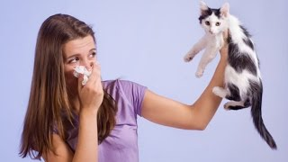 CAN YOU PREVENT CAT SPRAYING?