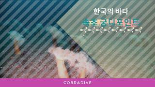 [스쿠버다이빙,scubadiving][코브라다이브,cobradive] 속초 장사항  -궁디포인트-