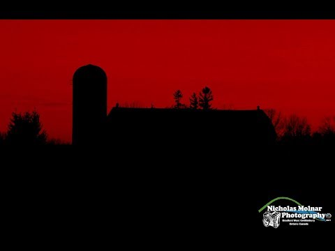 Barns of Bradford West Gwillimbury Ontario Canada Part 1