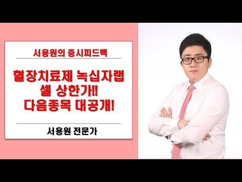 [주식투자][증시피드백] 녹십자랩셀 상한가! 후속주는? CMG제약이다!