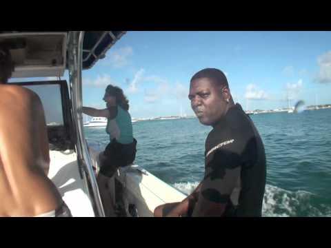 Week 51, 2010 ( trailer ) Ocean Explorers Dive Center