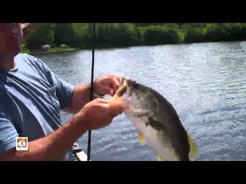 Bass Fishing With ISolunar - Solunar Table IPhone App