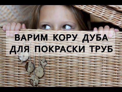 Варю морилку из коры дуба.