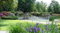 Der Rosengarten von Bern im Juni