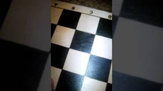 У чимся играть в шахматы.