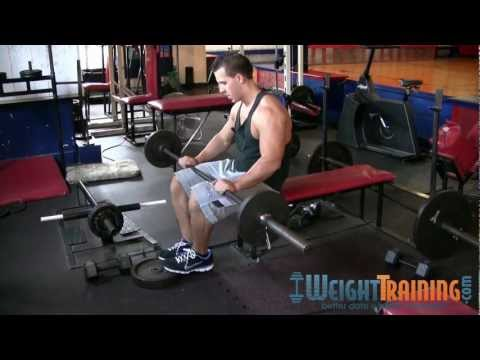 Seated Barbell Calf Raise - How to do Barbell Seated Calf Raises