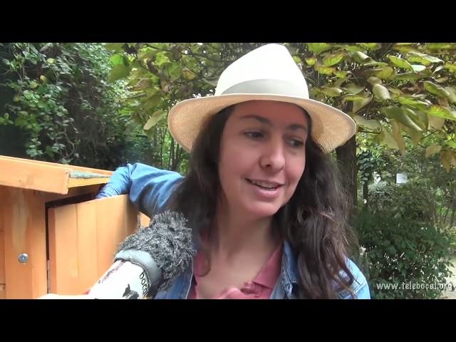 Le jardin des Haies - Septembre 2015