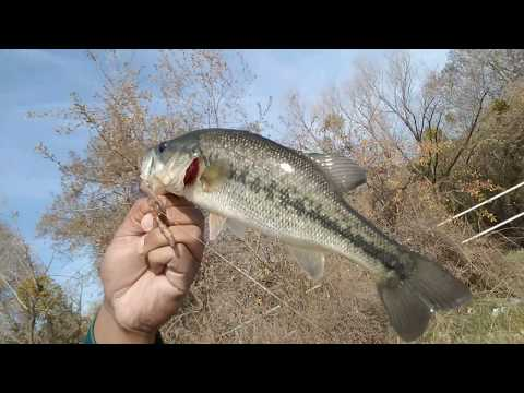 Sacramento fishing : deep water channel