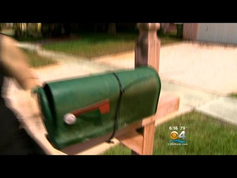 Dozens Of Mailboxes Vandalized In Pembroke Pines