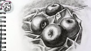 Tips and Tricks to Shade and Give Volume How to Draw Some Apples with Pencil