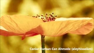 Canlar Kurban Can Ahmede (aleyhisselam) - Müziksiz İlahi