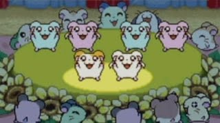 CGR Undertow - HAMTARO: HAM-HAM HEARTBREAK review for Game Boy Advance