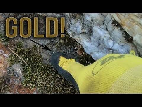 Outdoor Prospecting Adventure Leads To Ground Littered With GOLD!
