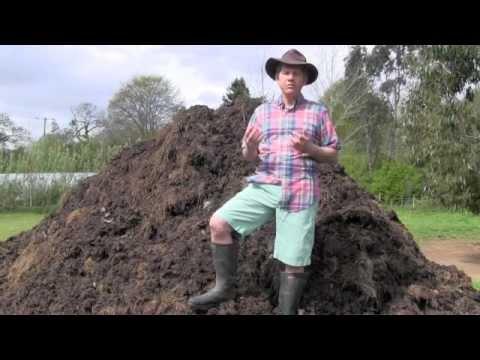 Manure In Gardening