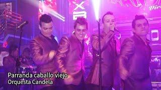 PARRANDA CABALLO VIEJO ORQUESTA CANDELA 2015