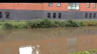 The River Wey is currently under a Flood Alert following heavy rainfall