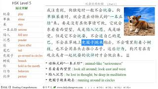 Learn Chinese -【HSK level 5】 Reading Comprehension 玩耍的狗和猫