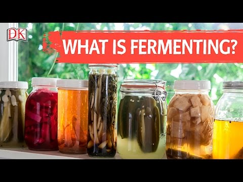 What is Fermenting?