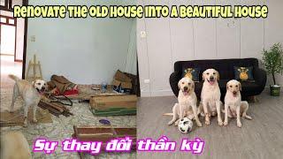 Củ Cải - Biến chiếc ổ chuột thành căn phòng cực đẹp | Renovate the old house into a beautiful house