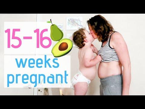 15 AND16 WEEK PREGNANCY UPDATE || PROTEIN IN URINE UPDATE || PREGNANCY SYMPTOMS