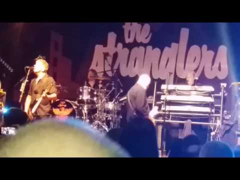 The Stranglers. - Go Buddy Go. - Cardiff. - 27/03/2017.