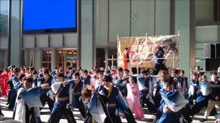 よさこい総踊り「GANKO‼」~第14回浜松がんこ祭(浜よさ)~2014