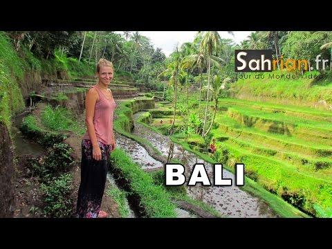 Bali: plongées, singes et rizières - blog tour du monde