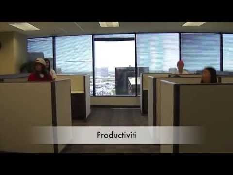 Protiviti Dallas Intern Video 2012