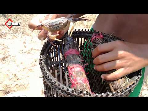 Thumbnail: Smart Children Catch Crab Using Bamboo Net Trap - How To Catch Crab In Cambodia