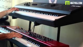 Nord Stage 2 VS Kurzweil Forte Comapre Organ