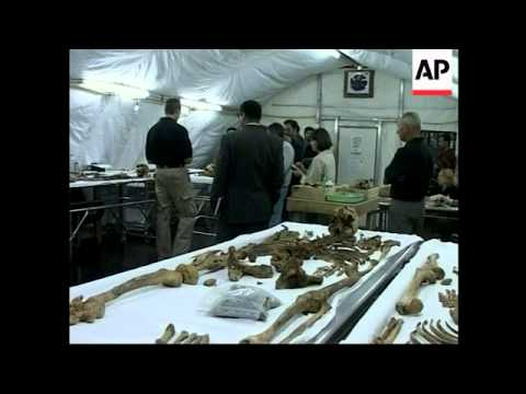 Saddam and others will be tried for Anfal campaign against Kurds