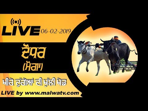 DAUDHAR (Moga) OX RACES [06-Feb-2019] 🔴 LIVE STREAMED VIDEO