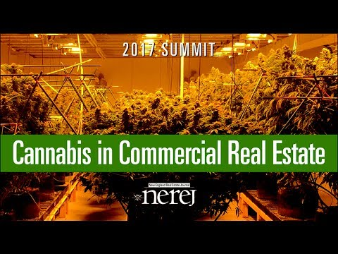 Starting a legal cannabis business with NEREJ's Cannabis Summit