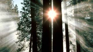 Jaden Merrick - Fixate (Original Mix)